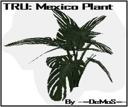 TRU: Mexico Rain Plant (Original Mesh by teme9)