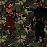 AK Guards