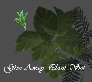 Give Away Plant set 1
