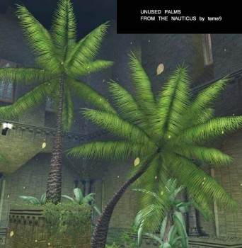 Unused palms from the Nauticus