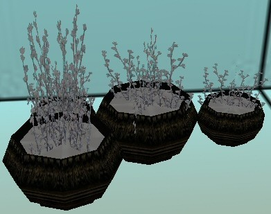 Snowy Potted Plants