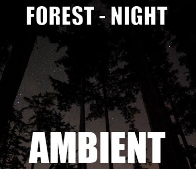 Ambient track - Forest : Night