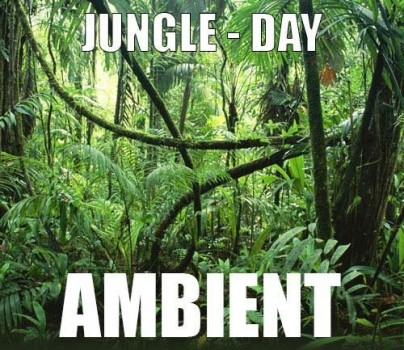 Ambient track - Jungle : Day