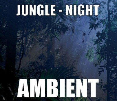 Ambient track - Jungle : Night
