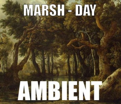 Ambient track - Marsh : Day