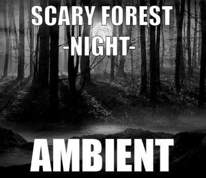 Ambient track - Scary forest : Night