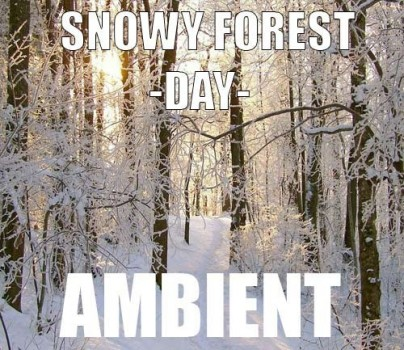 Ambient track - Snowy Forest : Day