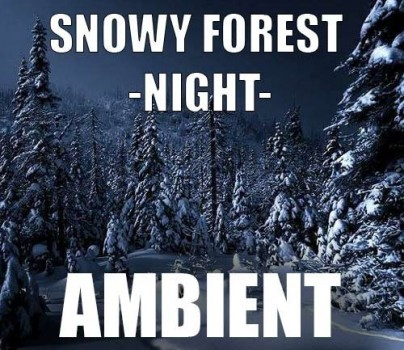 Ambient track - Snowy Forest : Night